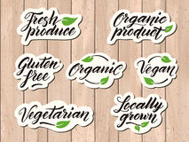 Hand drawn healthy food letterings. Label, badge, logo template Royalty Free Stock Photo