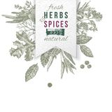 Herbs and spices composition with paper emblem. Hand drawn herbs and spices composition with paper emblem. Can be used for menu design, poster, banner, emblem Royalty Free Stock Images