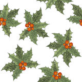 Hand drawn holly berry seamless Stock Images