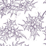 Hand drawn  Holly twigs seamless pattern Stock Images