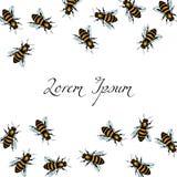 Hand drawn honey bees Royalty Free Stock Photo