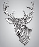 Hand drawn  horned deer with  high details ornament. Isolated on white background, illustration in zentangle style Royalty Free Stock Images
