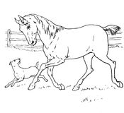 Hand Drawn Horse And Dog Royalty Free Stock Photos