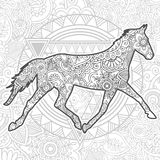 Hand drawn horse doodle animal paisley adult stress release coloring page zentangle. Hand drawn doodle animal paisley adult stress release coloring page royalty free illustration