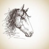 Hand drawn horse Royalty Free Stock Photo