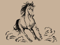Hand drawn horse. Vector illustration Royalty Free Stock Image