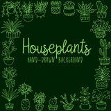 Hand drawn houseplant banner Stock Images