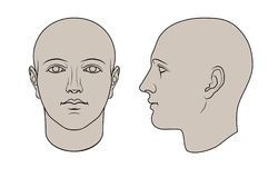 Hand Drawn Human Head in 2 Views Stock Photography