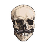 Hand drawn human skull with curled upward hipster moustache Stock Image