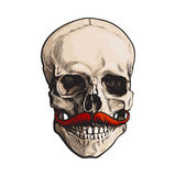 Hand drawn human skull with curled upward hipster red moustache Royalty Free Stock Photos