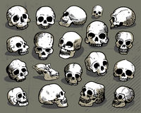 Hand-drawn human skulls Stock Photos