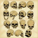 Hand-drawn human skulls illustration Stock Photos