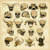 Hand-drawn human skulls illustration Stock Image