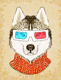 Hand Drawn Husky Dog with 3d Glasses. Vector illustration, eps10. Stock Photo