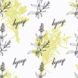 Hand drawn hyssop branch, flowers and handwritten Stock Photography