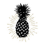 Hand drawn icon with textured pineapple vector illustration Stock Photo