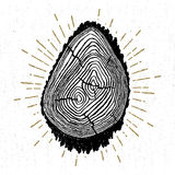 Hand drawn icon with a textured tree trunk vector illustration Royalty Free Stock Images