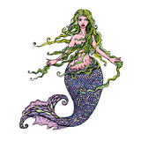 Hand drawn Illustration of a Beautiful mermaid girl isolated on Royalty Free Stock Image
