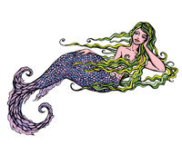 Hand drawn Illustration of a Beautiful mermaid girl isolated on. White background Stock Images