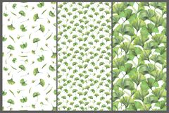 Set with three seamless patterns with green leaves of ginkgo biloba. Hand drawn illustration with colored pencils. Botanical natural design for textiles vector illustration