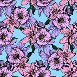 Hand drawn illustration. Delicate pink and purple flowers. Seamless pattern. Royalty Free Stock Image
