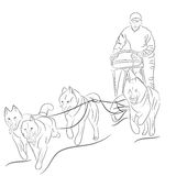 Hand drawn illustration of dogs pulling a sled Stock Images