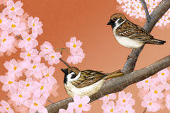 Hand drawn illustration of Eurasian tree sparrows sitting among Japanese Yoshino cherry flowers Royalty Free Stock Photo