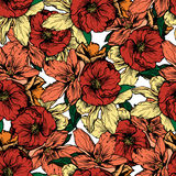Hand drawn illustration. Flowers and red poppies. Seamless pattern. Stock Photos