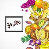 Hand drawn illustration fruits. Beautiful hand drawn illustration fruits on the wood textyre Stock Photography