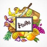 Hand drawn illustration fruits. Beautiful hand drawn illustration fruits on the wood textyre Stock Image