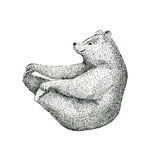Hand drawn  illustration of fun a bear isolated on vintage backg Stock Image