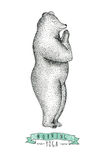 Hand drawn  illustration of fun a bear isolated on vintage backg Royalty Free Stock Photos
