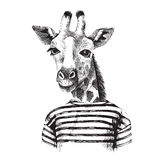 Hand drawn Illustration of giraffe hipster Stock Photography