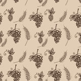 Hand drawn illustration of grapes, hop, barley, seamless pattern on beige background Stock Photos