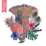 Hand drawn illustration with indian elephant head, leaves, flowers, feathers. Royalty Free Stock Image