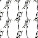 Hand drawn illustration knots. Pattern. Vector Royalty Free Stock Photography