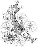 Hand drawn  illustration of Koi fish with lotus flower Stock Image