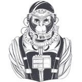 Hand drawn illustration of a monkey astronaut, chimpanzee in a space suit. In the style of engraving. Print for T-shirts, template, sketch tattoo, design Stock Photos