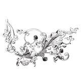 Hand drawn illustration of raspberry branch Baroque  Royalty Free Stock Photos