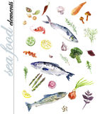 Hand drawn illustration of seafood elements Stock Images