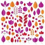 Hand-drawn illustration of simple tree leaves . Autumn s Stock Image