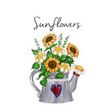 Hand drawn illustration - sunflower bouquet inside watering metal can Royalty Free Stock Photography