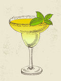 Hand drawn illustration of tropical cocktail. Royalty Free Stock Photo