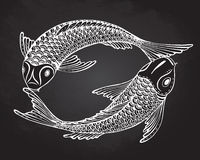 Hand drawn  illustration of two Koi fishes (Japanese carp) Stock Images