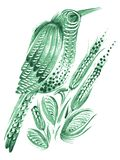 Birdie, green, spring. Hand drawn, , illustration in Ukrainian folk style Stock Photography