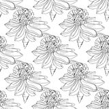 Hand-drawn illustrations of a bee on a flower, pollination, hand-drawing. Seamless pattern. Stock Image
