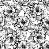 Hand-drawn illustrations. Black and white flowers and poppies. Seamless pattern. Stock Photos