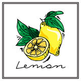 Hand-drawn illustrations. Card with fruits, lemons. Colorful postcard. Royalty Free Stock Photo