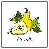Hand-drawn illustrations. Card with fruits, pears. Colorful postcard. Royalty Free Stock Photography