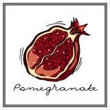 Hand-drawn illustrations. Card with fruits, pomegranates. Colorful postcard. Stock Image